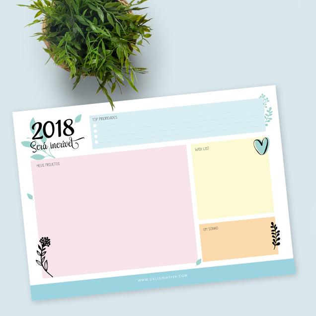 Quais os planos para 2018?